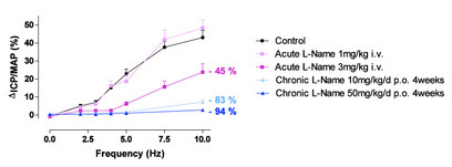 Figure 1: Effects of acute L-NAME (1 or 3 mg/kg i.v.) and chronic L-NAME (10 or 50 mg/kg/d p.o. for 4 weeks) on intracavernosal pressure (ICP) after ES CN in anesthetized rats (Pelvipharm internal data).