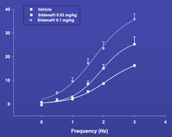 Figure 2: Effects of acute sildenafil intravenous injection (0.03 or 0.1 mg/kg i.v.) on intracavernosal pressure (ICP) after ES CN in anesthetized rats (From Behr-Roussel et al., ESSIR 2001).