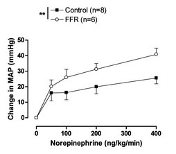 Figure 3: Concentration response curves to increasing doses of norepinephrine infusion (0 to 400 ng/kg/min) on mean arterial pressure (MAP) measured in vivo in conscious animals (control and fructose-fed rats (FFR)). (From Oudot et al. J Physiol Res 2008).