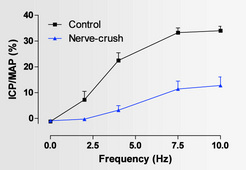 Figure 1: Effects of bilateral cavernous nerve crush injury (4 weeks post-surgery) on intracavernosal pressure (ICP) after ES CN in anesthetized rats (from Bessede T et al., 2008).