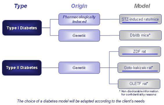 Diabetes_models.jpg