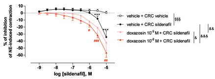 Figure 2: Influence of doxazosin on the relaxation induced by sildenafil on norepinephrine-precontracted cavernosal strips. From Oger, S. et al. J Sex Med (2009) : 6(3) : 836-847