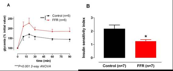 Figure 1: Glycemia monitoring during OGTT (A) and resulting insulin sensitivity index (B) in control rats and in an experimental model of insulin resistance: the fructose-fed rat (FFR) (Pelvipharm internal data and Oudot et. al 2009).